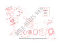 CYLINDERS   PISTONS for Ducati 1198 SP 2011