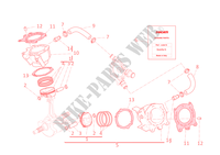 CYLINDERS   PISTONS for Ducati Diavel 2012