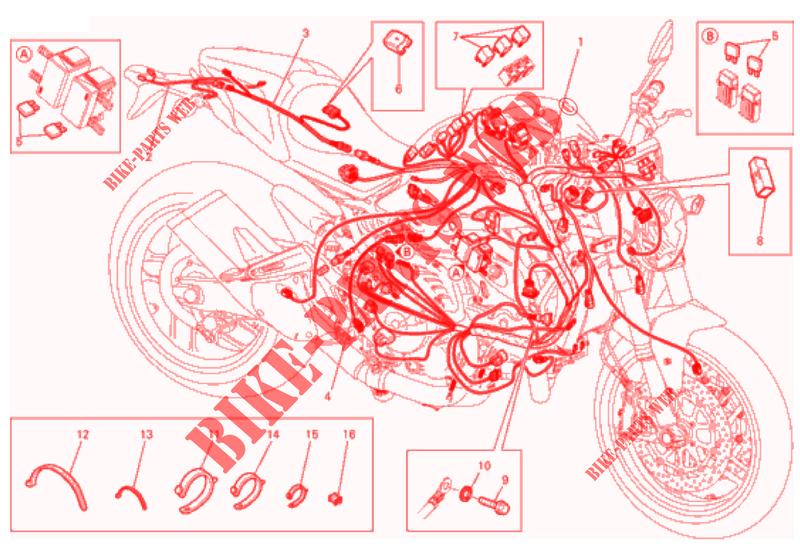 30 125cc Pit Bike Wiring Diagram - Wiring Diagram Database