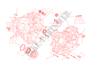 HALF CRANKCASES for Ducati Monster 1200 2015