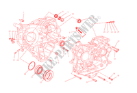 HALF CRANKCASES for Ducati Monster 1200 S 2015