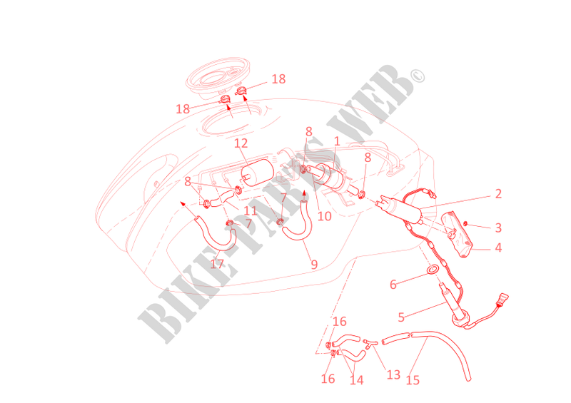 FUEL SYSTEM for Ducati Monster 1000 2005